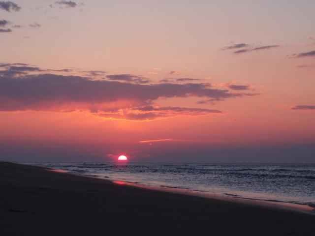 Foto playa Los Eucaliptos. Platja dels Eucaliptus, Delta de l´Ebre