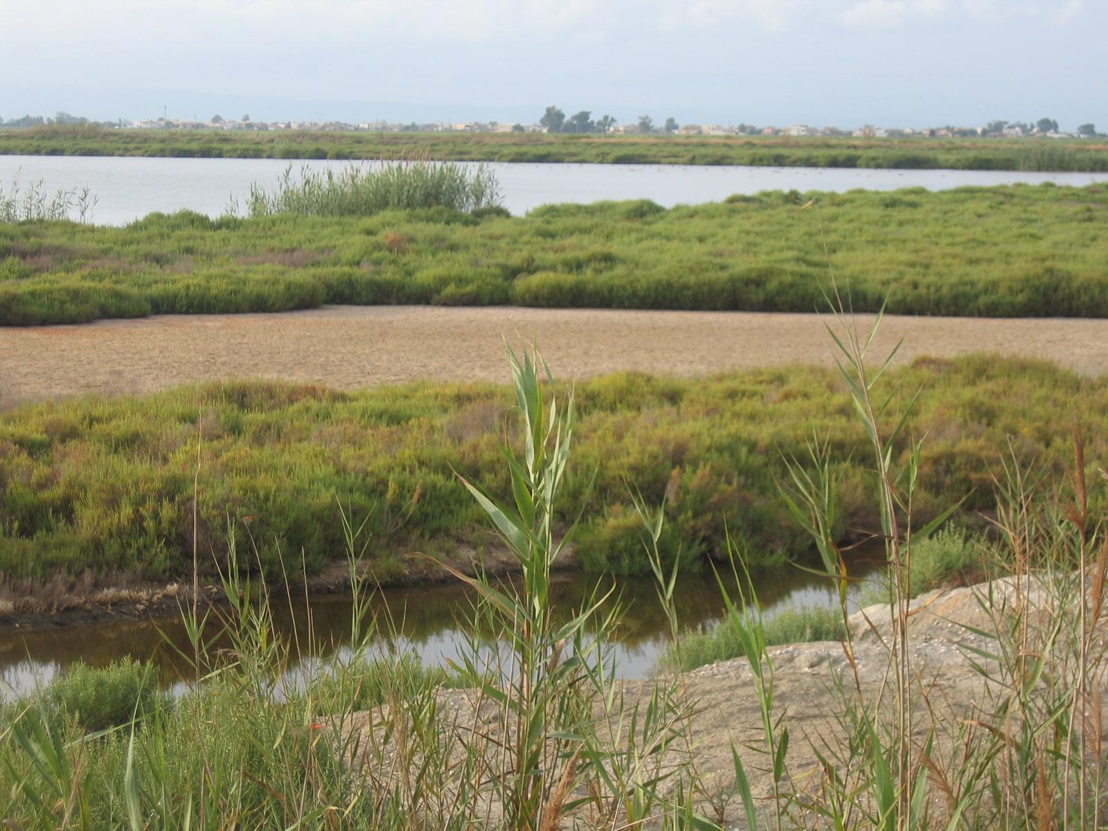 Foto playa El Trabucador.