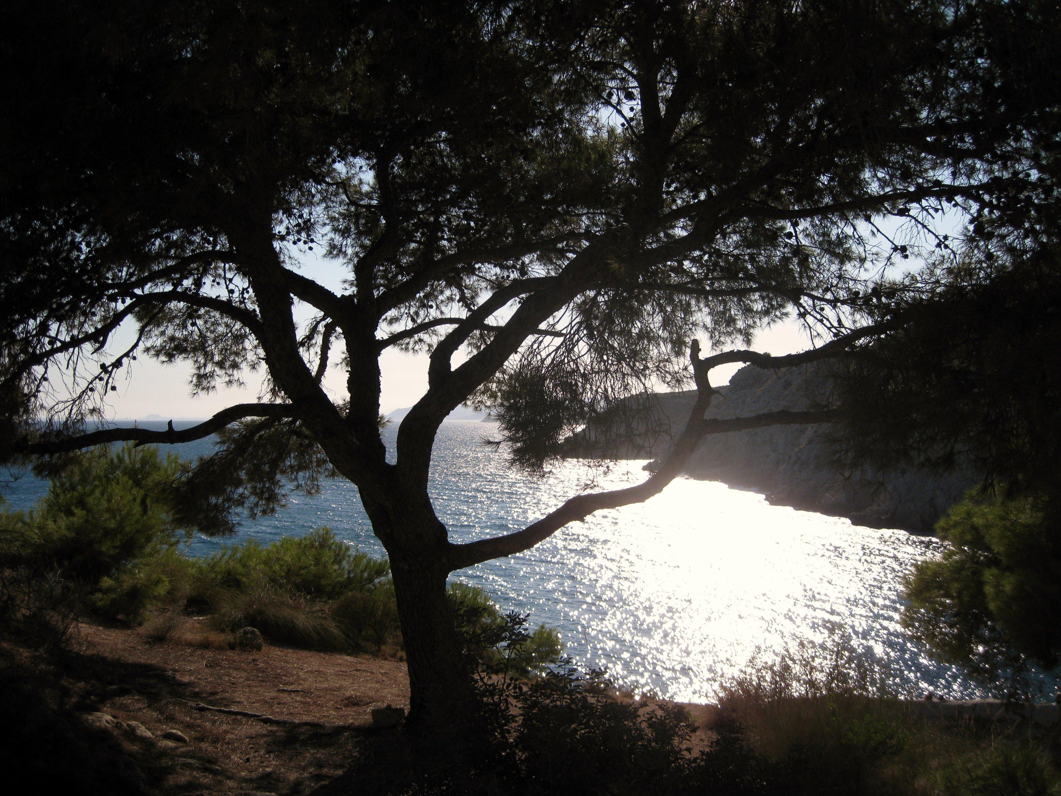 Playa La Fonda / Camping casas