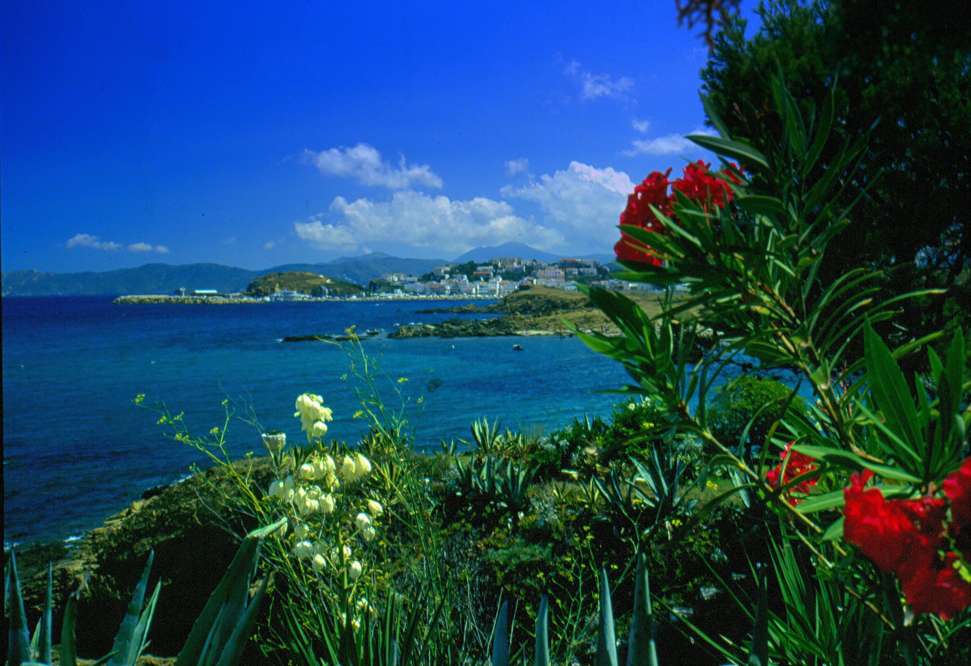 Playa Grifeu