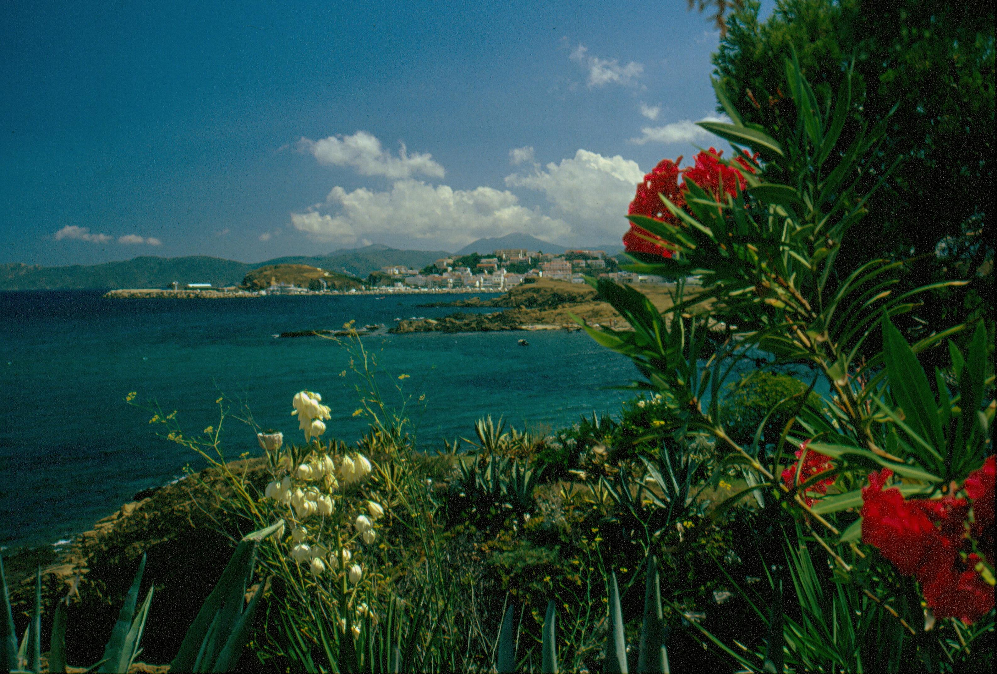 Foto playa Grifeu. bella costa