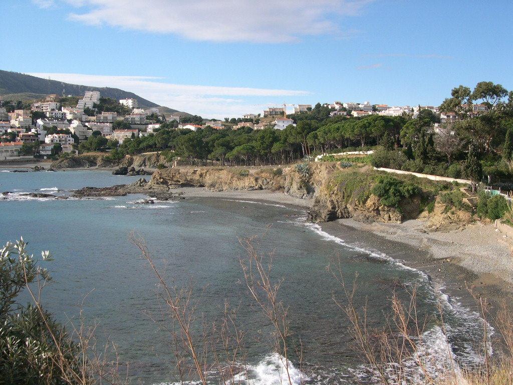 Foto playa Cau del Llop. Platja de Les Tonyines