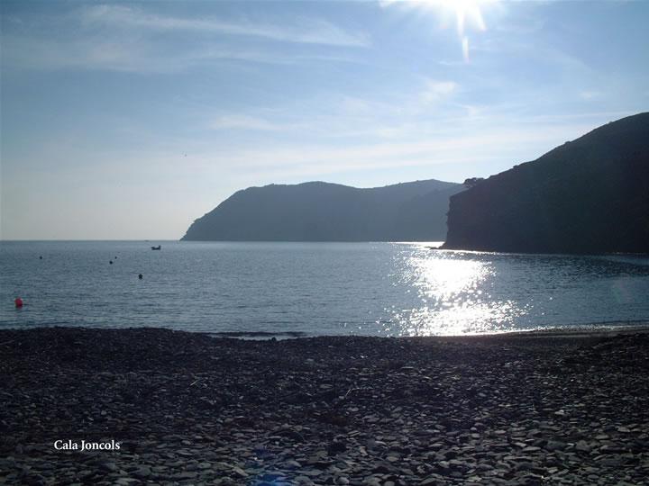 Foto playa Cala Joncols. Cala Juncols