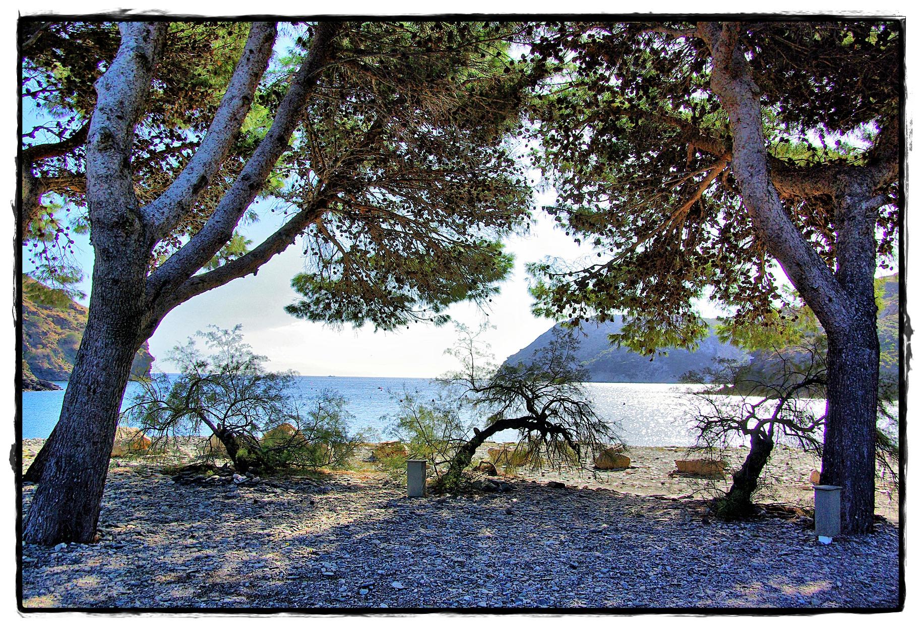 """Foto playa Cala Joncols. BADIA DE JÃ""""NCOLS - 6232"""