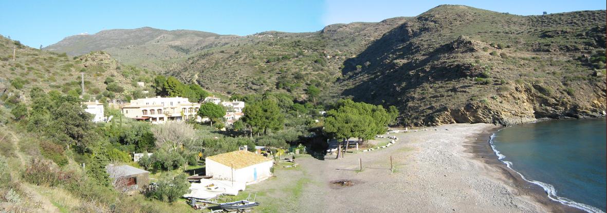 Foto playa Cala Canadell. Cala Juncols