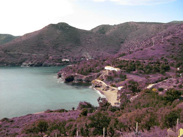 Foto playa Cala La Pelosa. Cala Pelosa