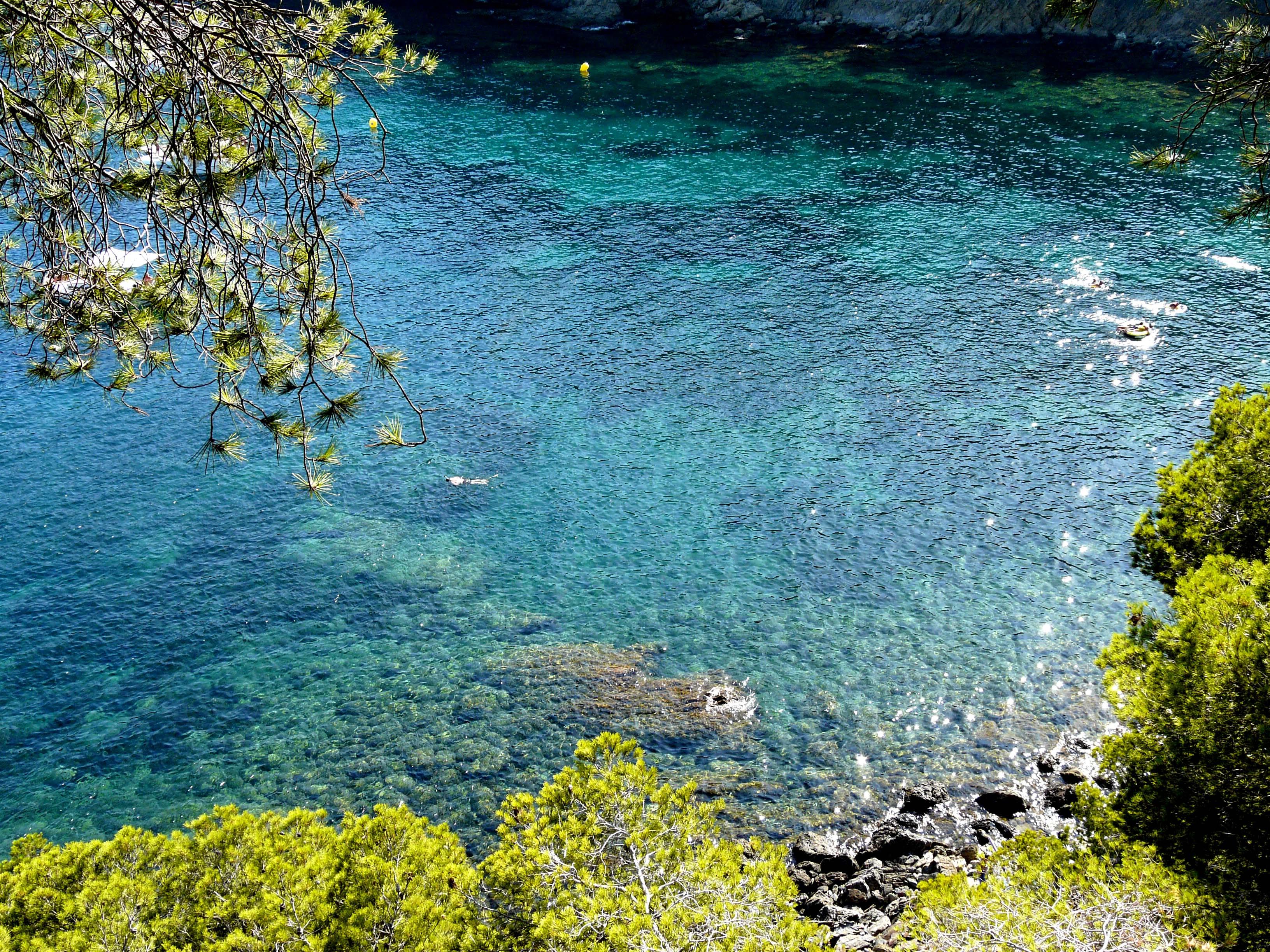 Foto playa Cala Murtra. Cala Rustella