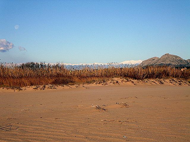 Foto playa Mas Pinell. Arena y Nieve
