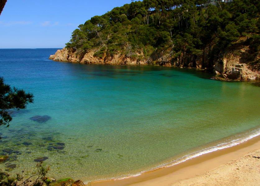 Foto playa Playa Fonda. Aigua Blava