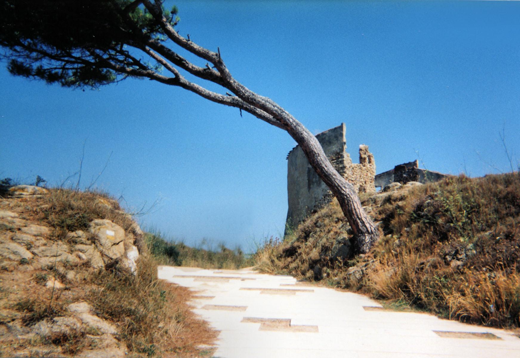 Foto playa La Fosca. La Fosca