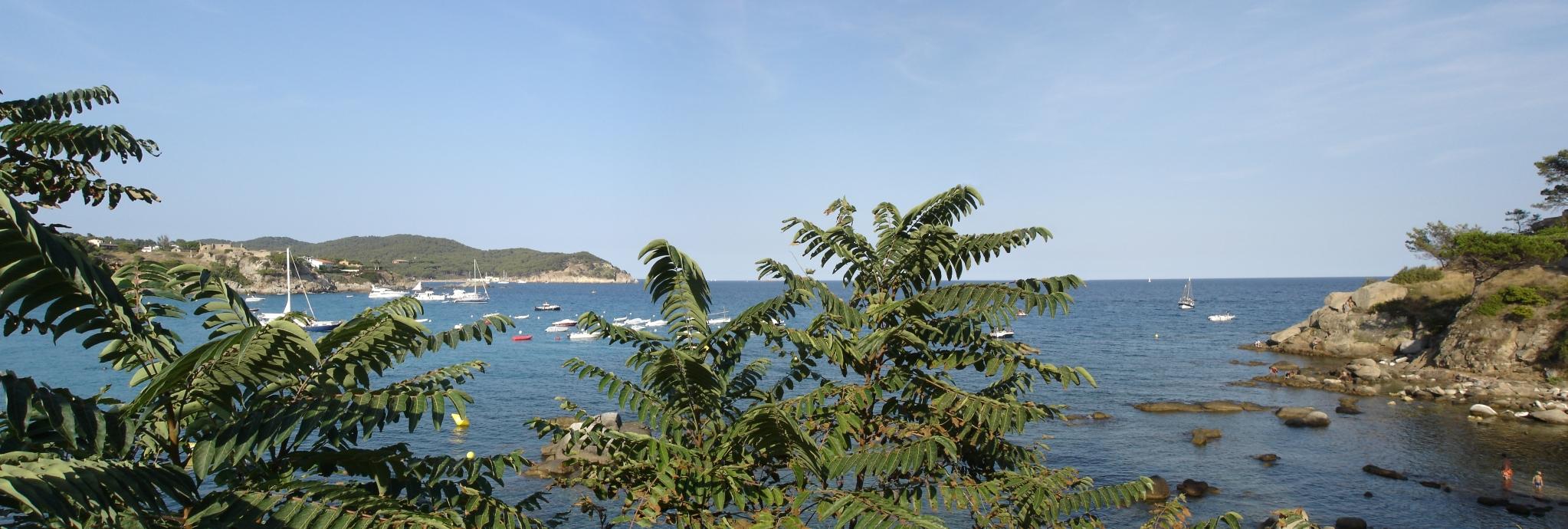 Foto playa Cala Margarida. Plage de la fosca