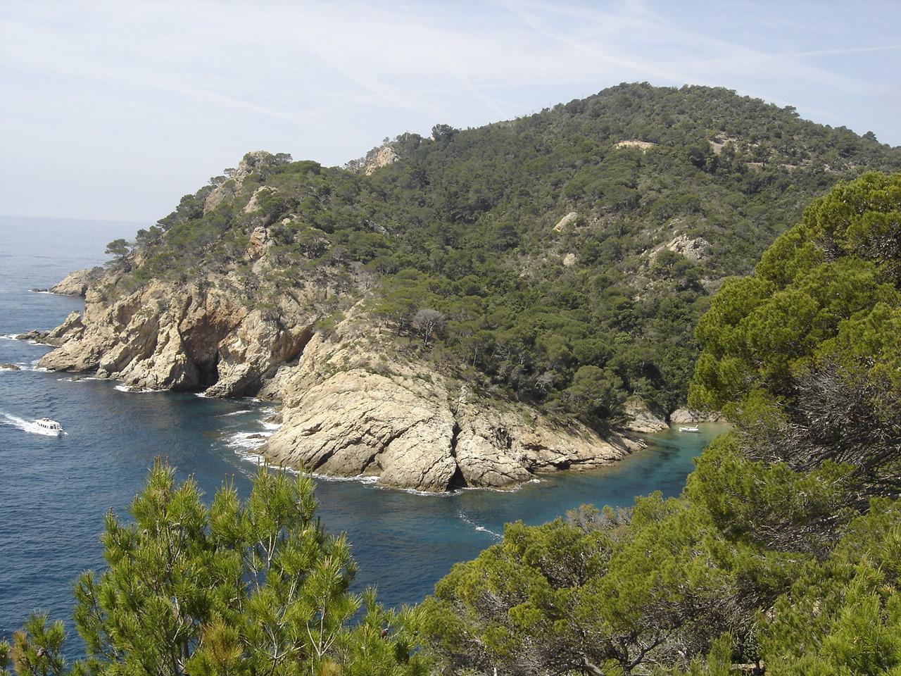 Foto playa Cala Bona. Punta de Cala Bona, Tossa de Mar
