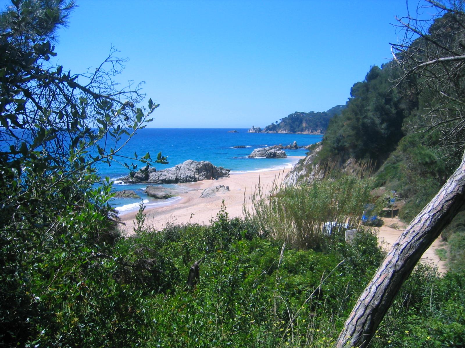 Foto playa Cala d'en Trons. vista boadella