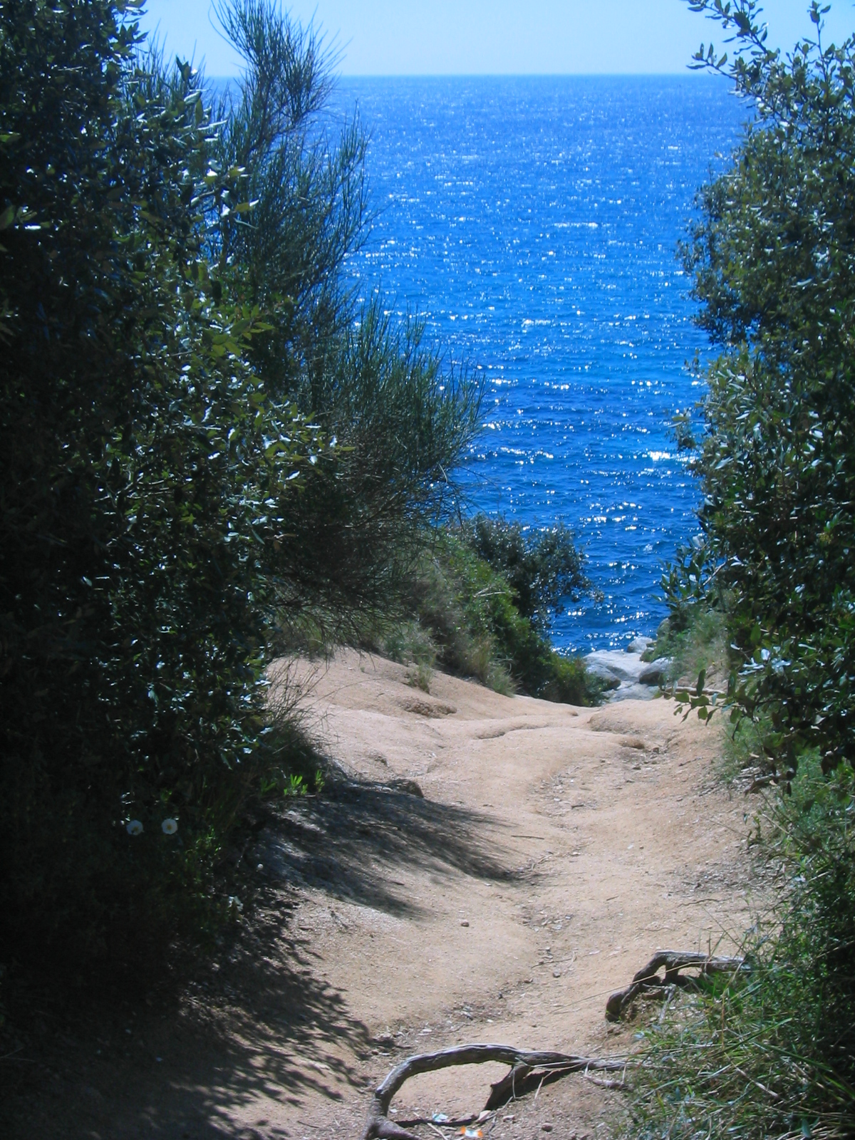 Foto playa Cala d'en Trons. Camí cap a la platja