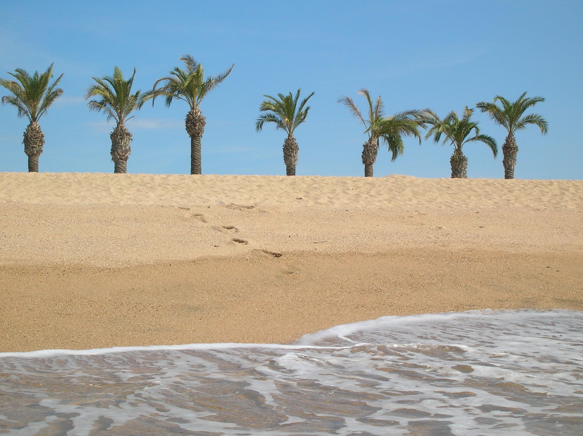 Foto playa Platja de les Dunes / Santa Susanna. Pineda de mar a Santa Susanna