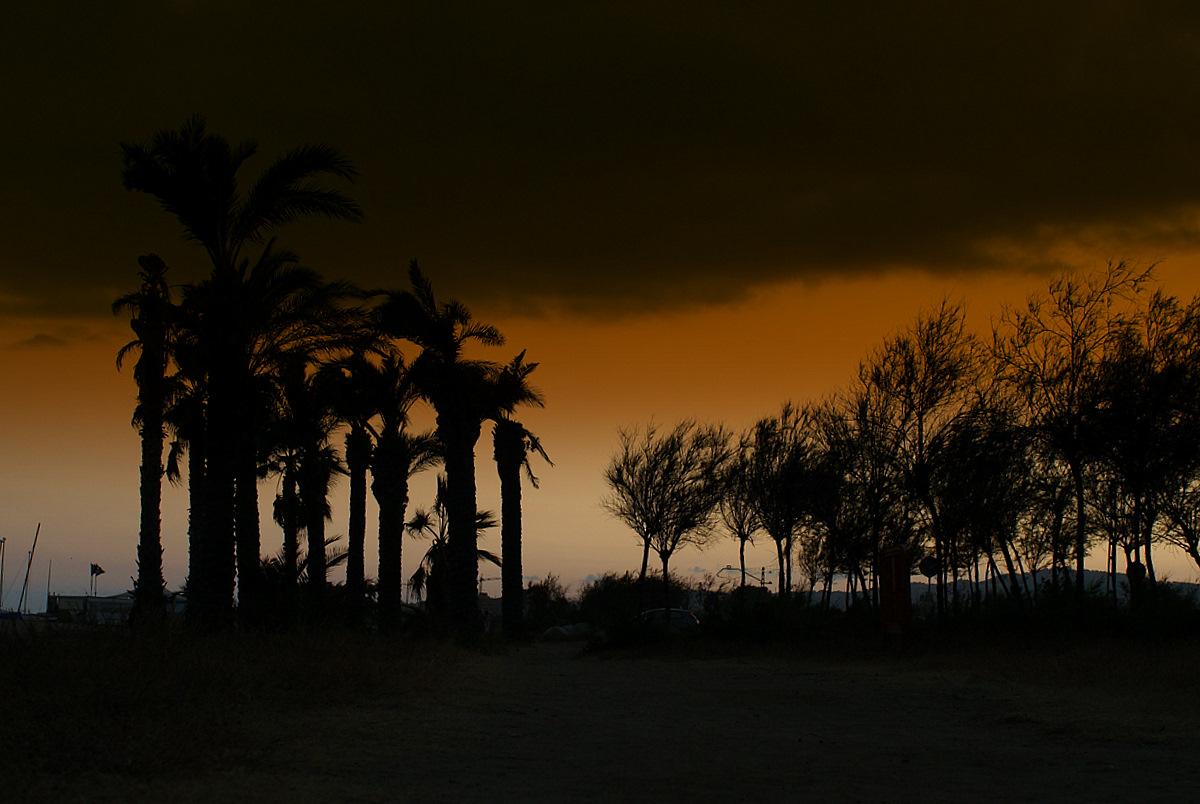 Foto playa Platja de les Dunes / Santa Susanna. Santa Susanna