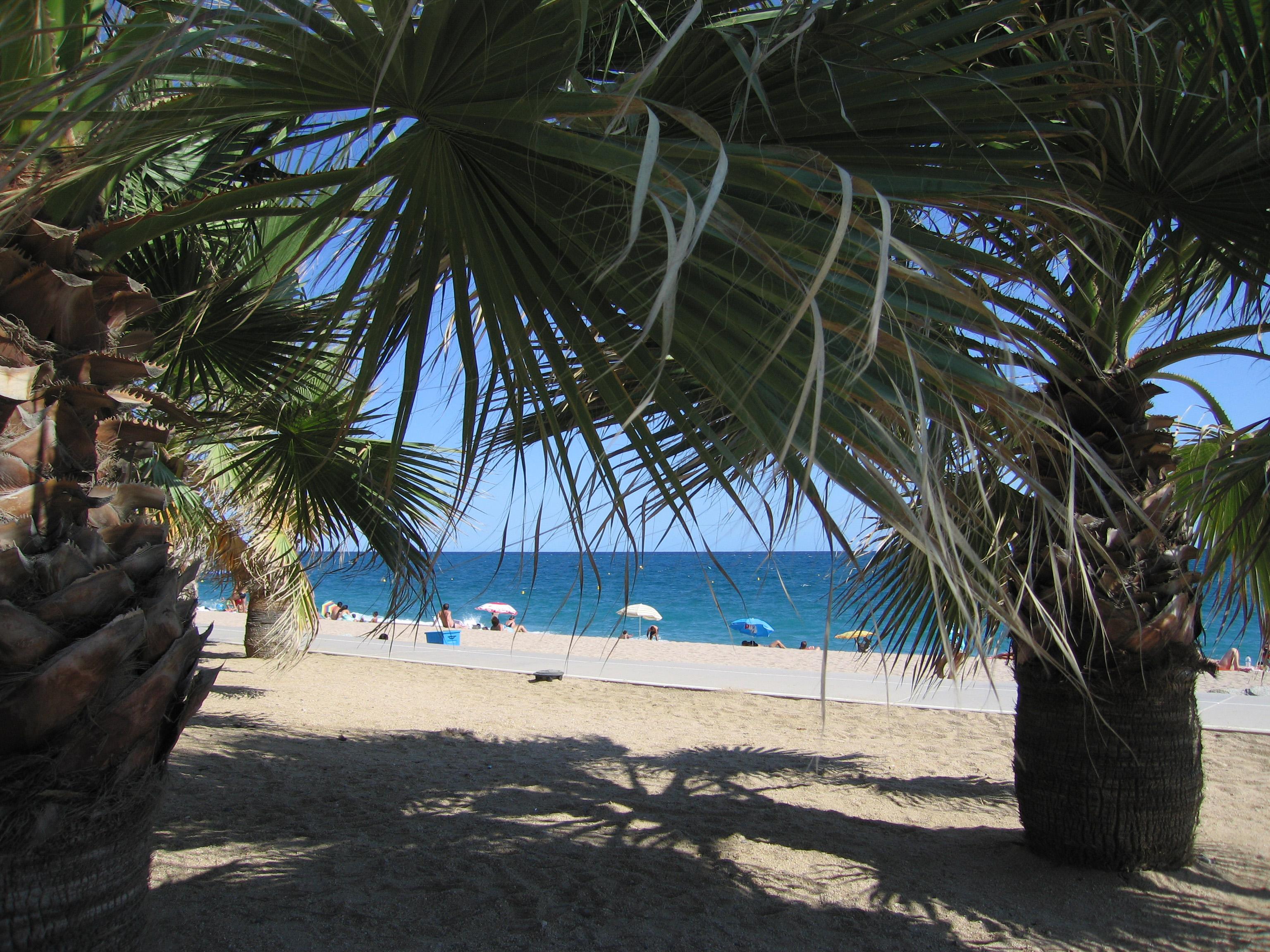 Playa Platja Gran