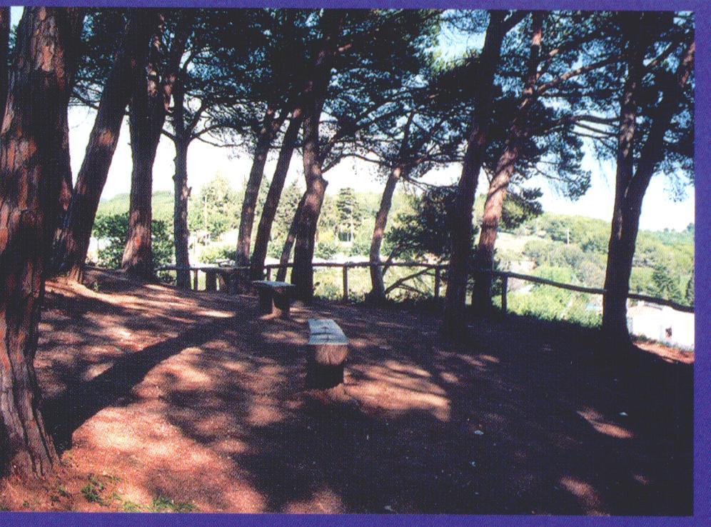 Foto playa Roques Blanques. Cannet de Mar 1997