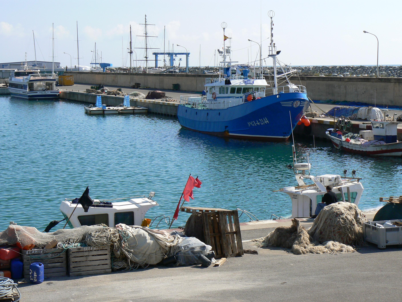 Foto playa Zona banys Fòrum. Reposo del Pescador, Arenys