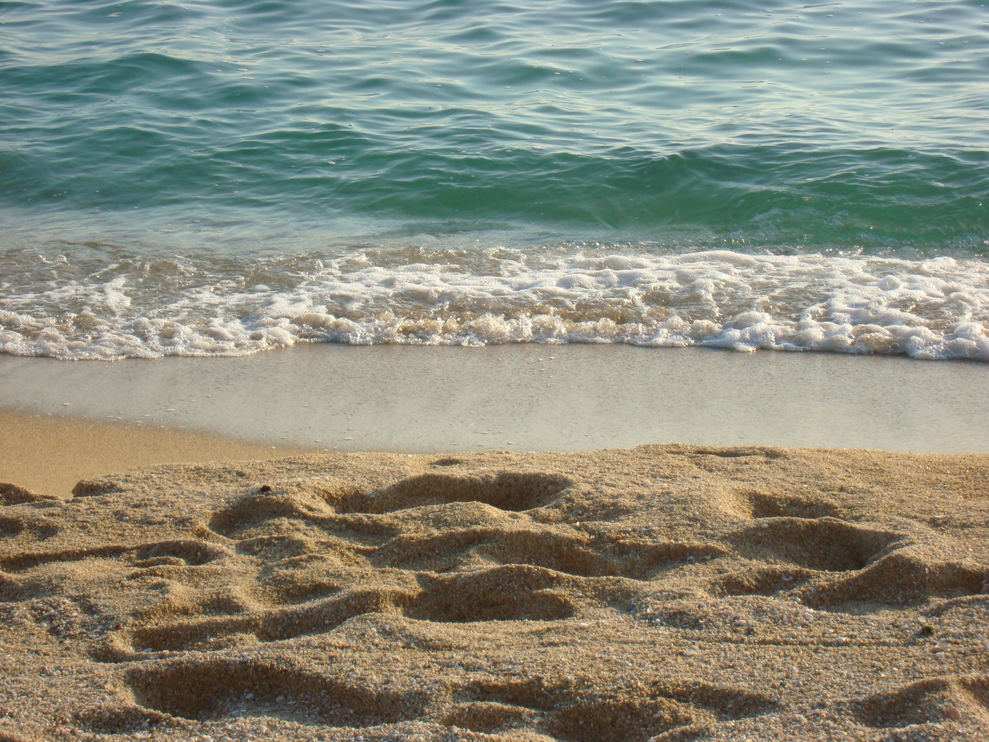 Playa La Musclera