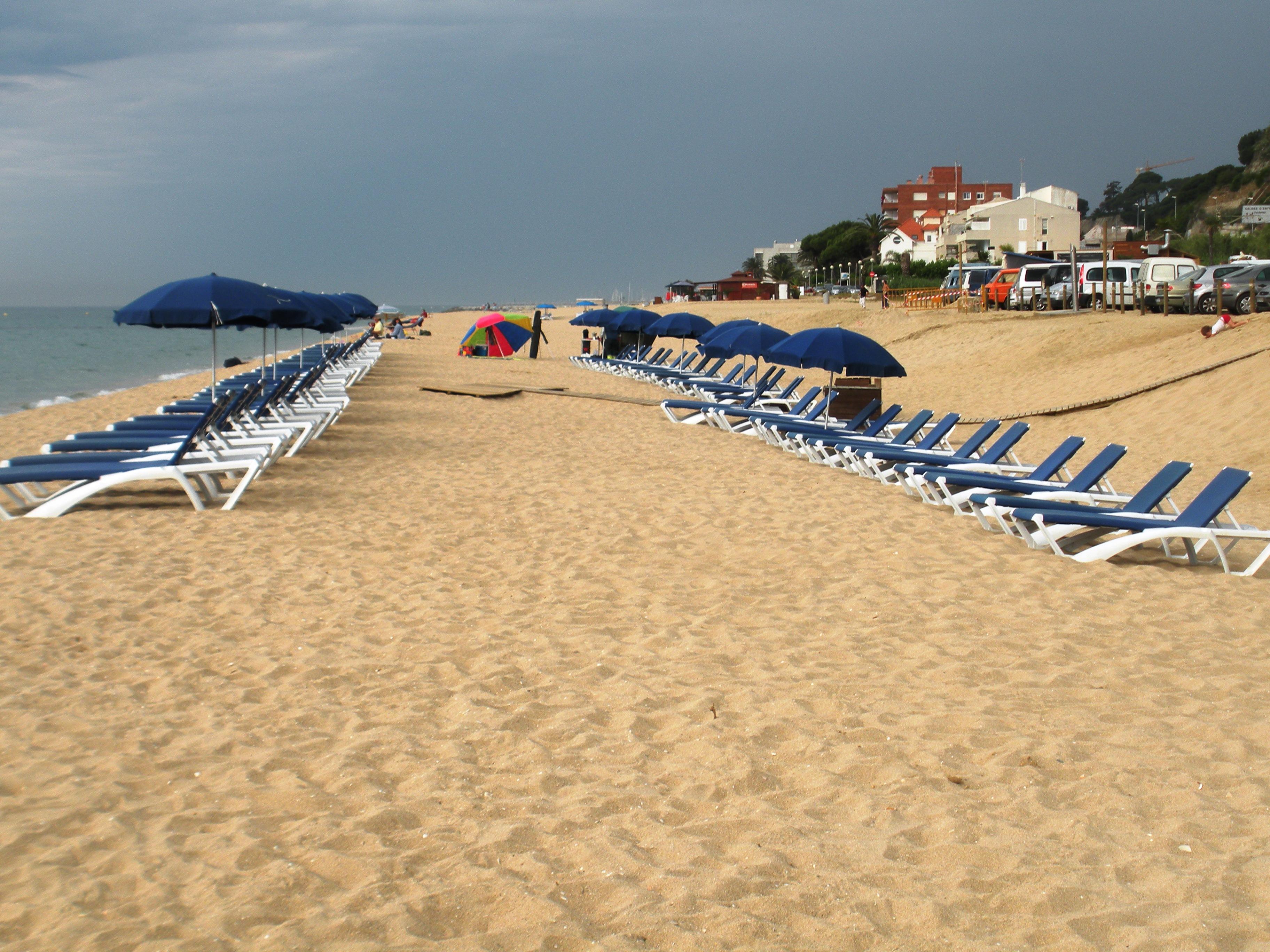Foto playa La Musclera. Gandules esperant hostes que avui no vindran