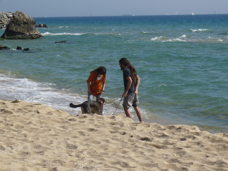 Foto playa Les Moreres / La Morera. Dia de playa