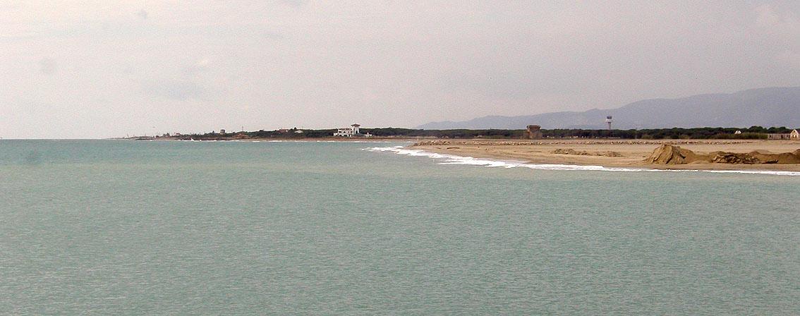 Foto playa Protegida sector II / La Ricarda / La Ricarda - Ca La'Arana. COSTA DEL PRAT DESDE RIU