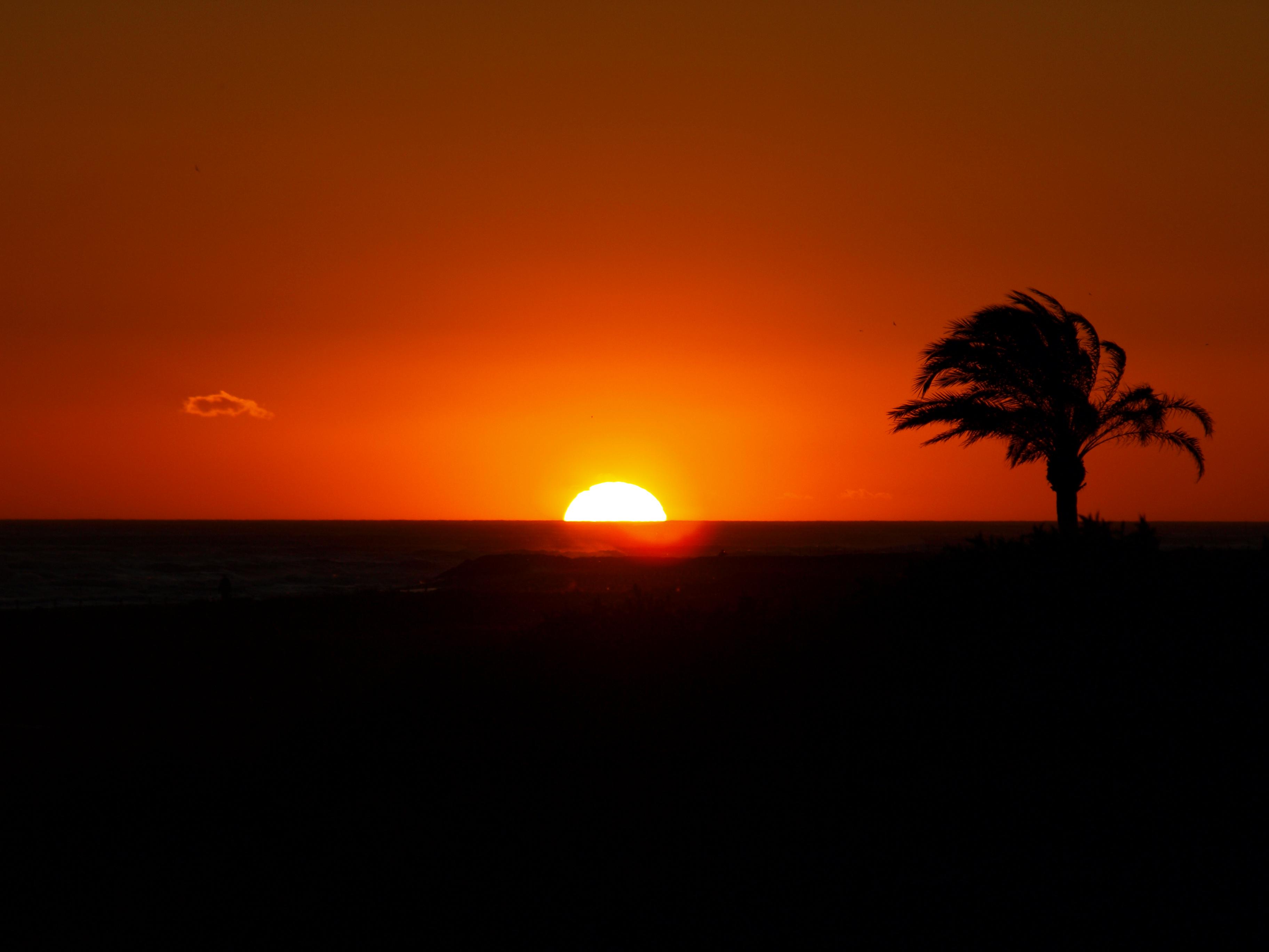 Foto playa Platja del Remolar. atardecer en el prat