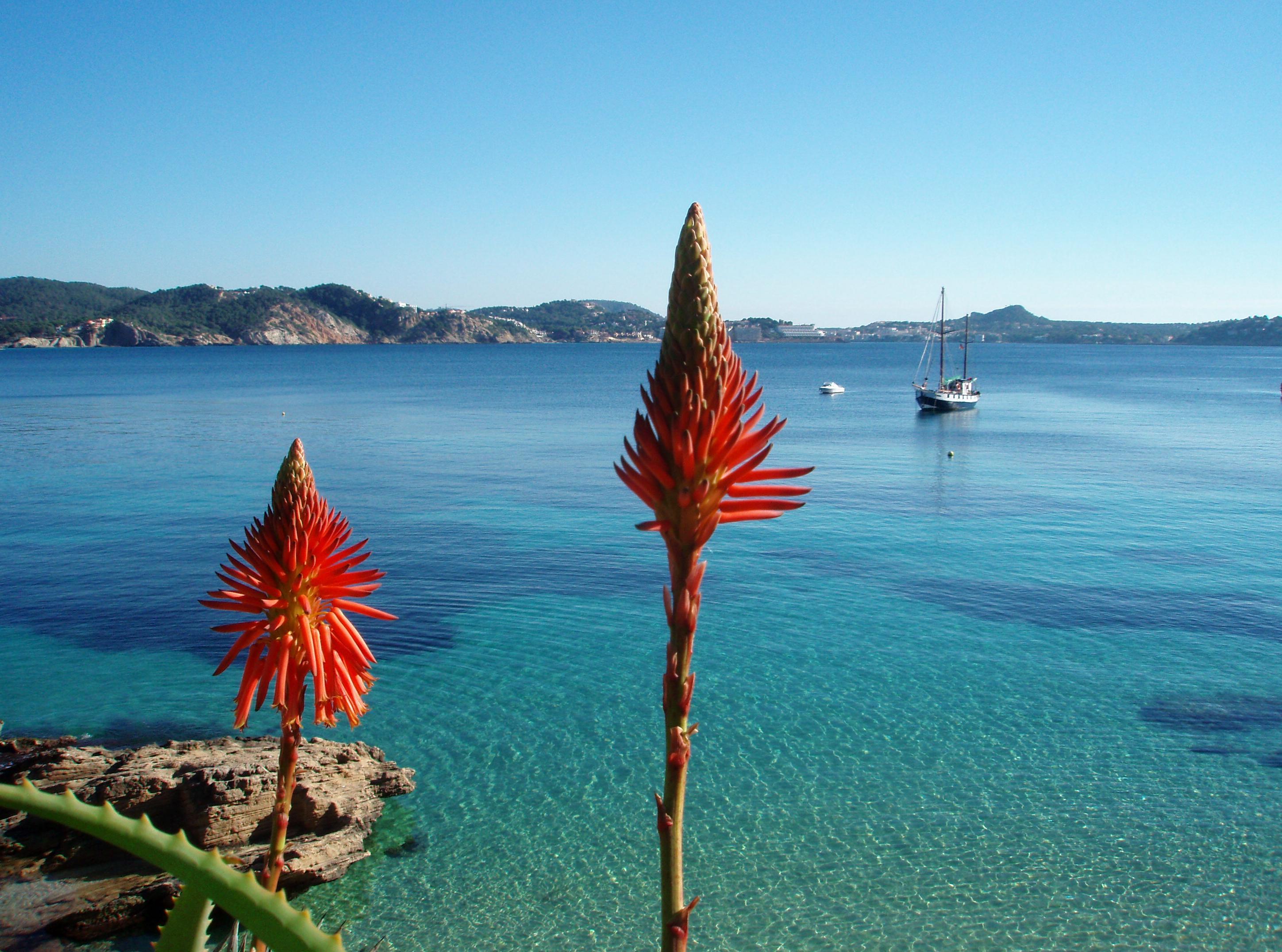 Playa Cala Forn