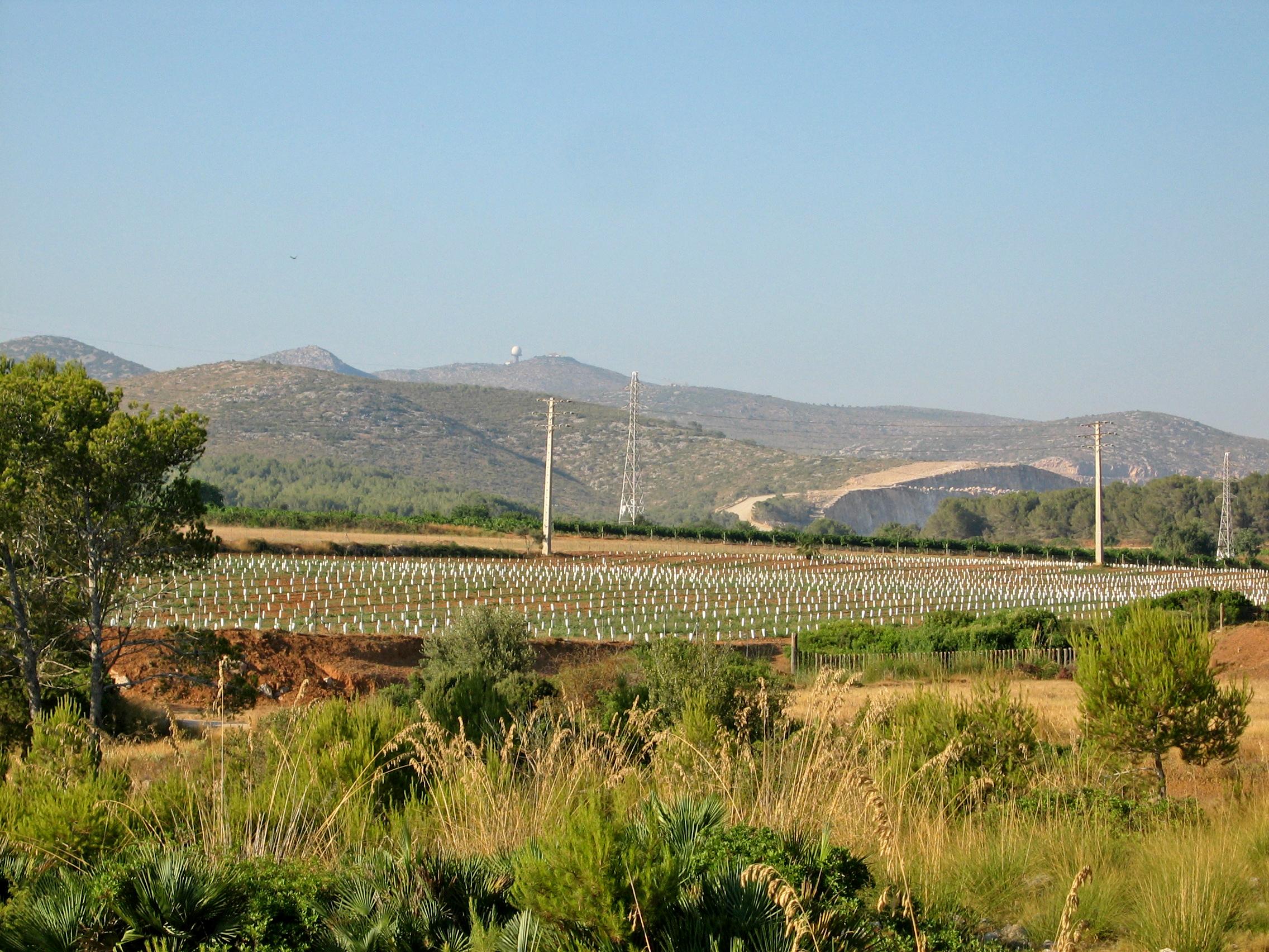 Foto playa Els Balmins. Plans de Campdasens