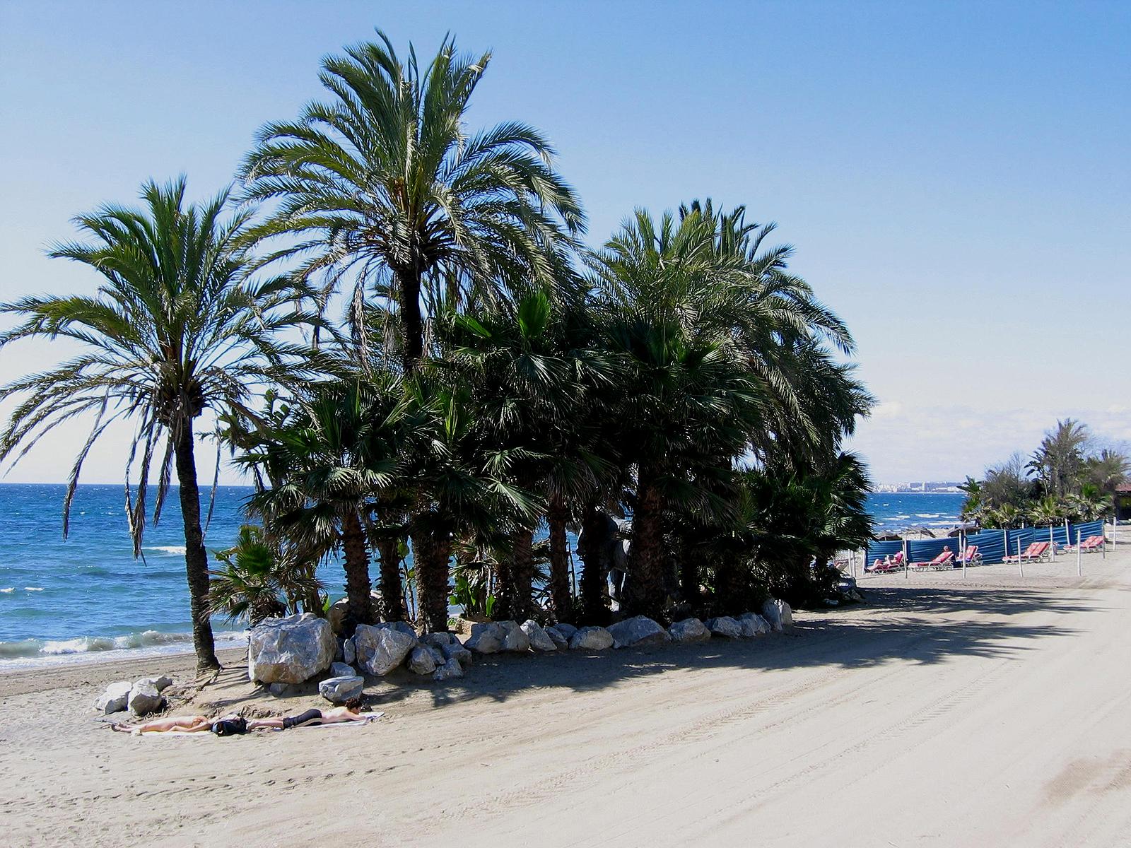 Playa La Venus