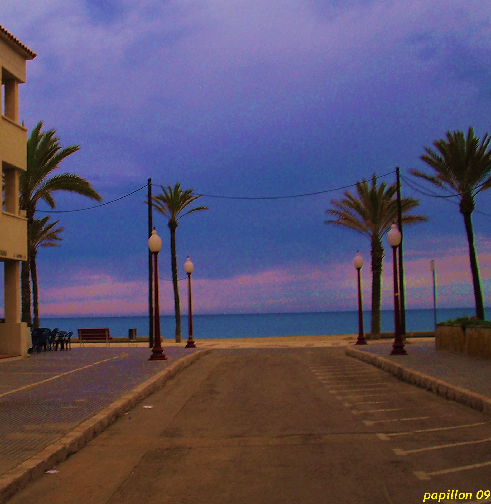 Playa Platja Llarga d'Ibersol