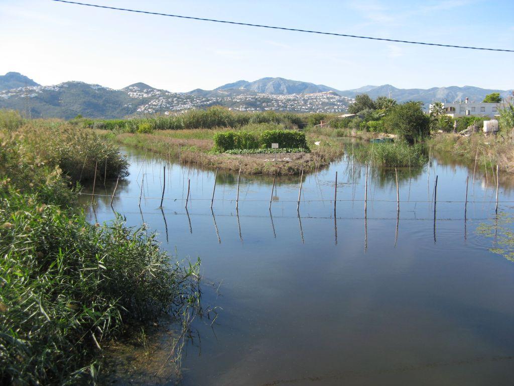 Foto playa Les Devesses / Bassetes. Rio Molinell leaves Pego Marsh