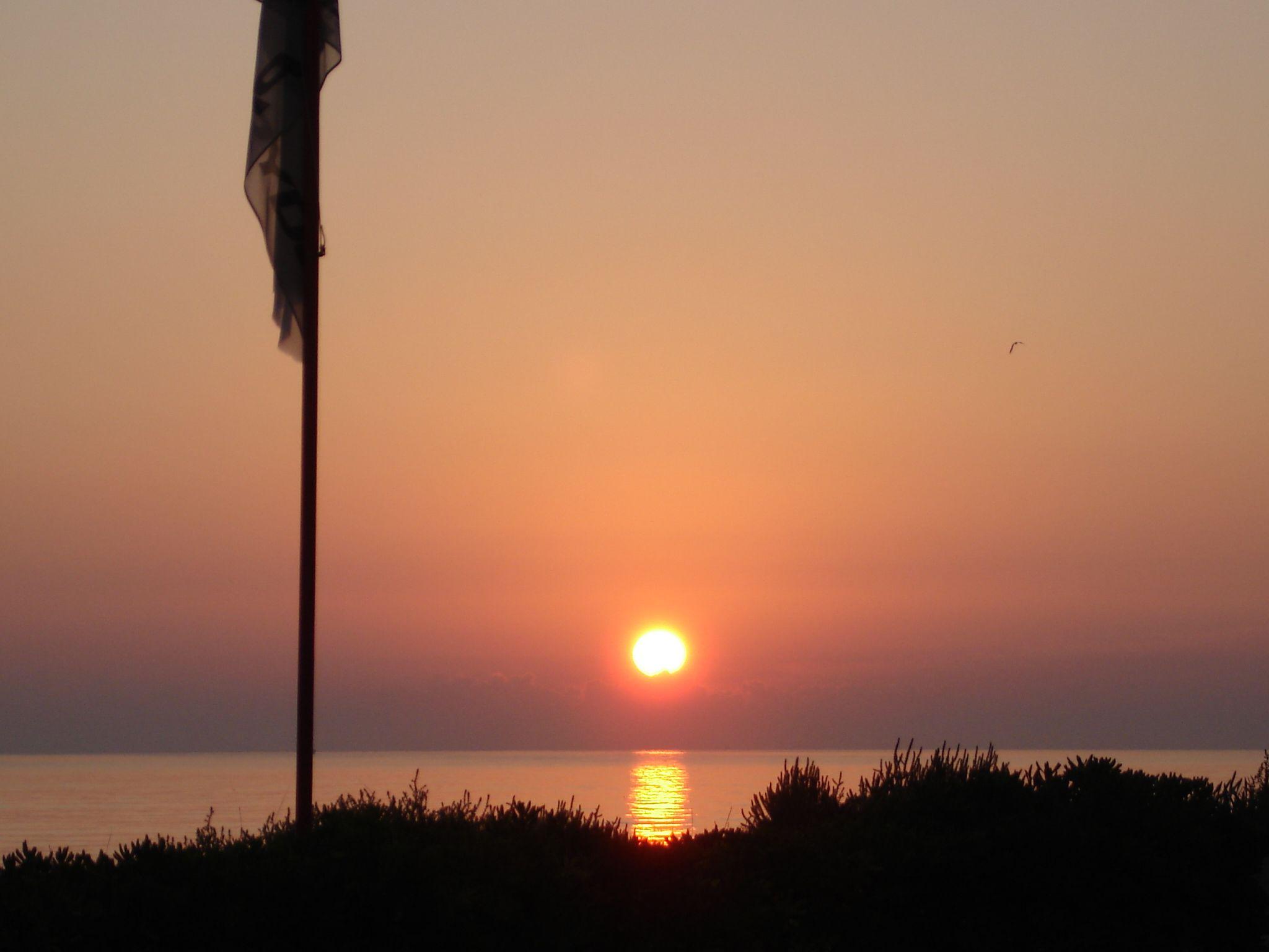 Foto playa Les Devesses / Bassetes. Sunrise Nueva Playa