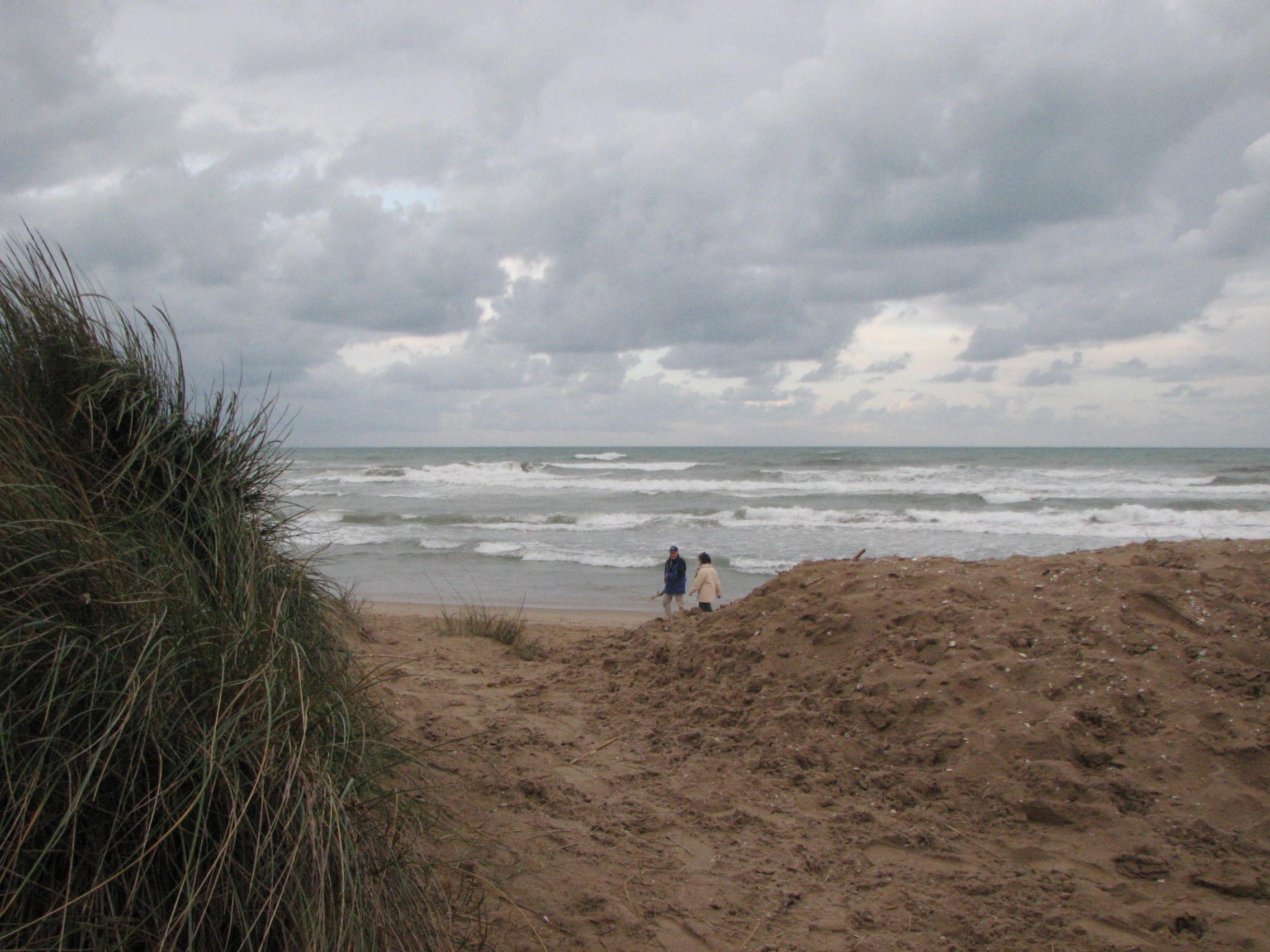 Foto playa L´Aigua Blanca. Oliva strand