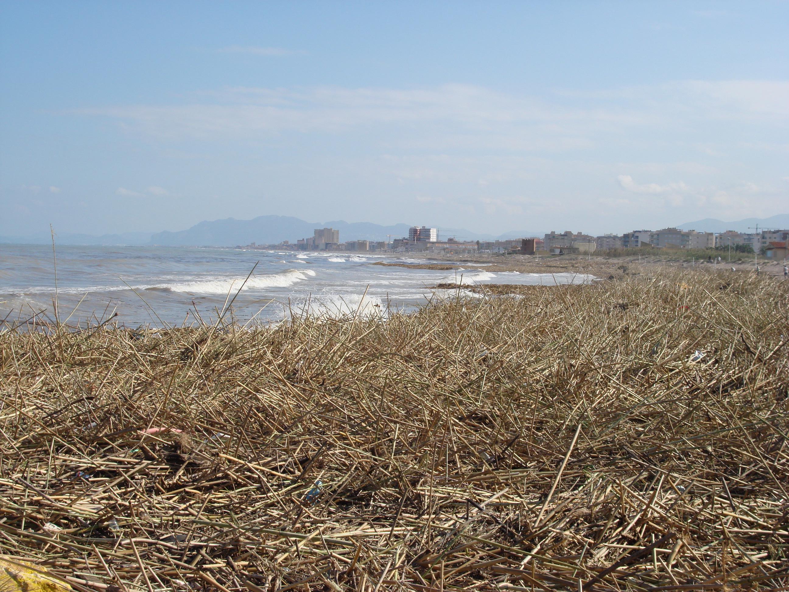 Foto playa Los Pedregales. Las Cañas del Temporal