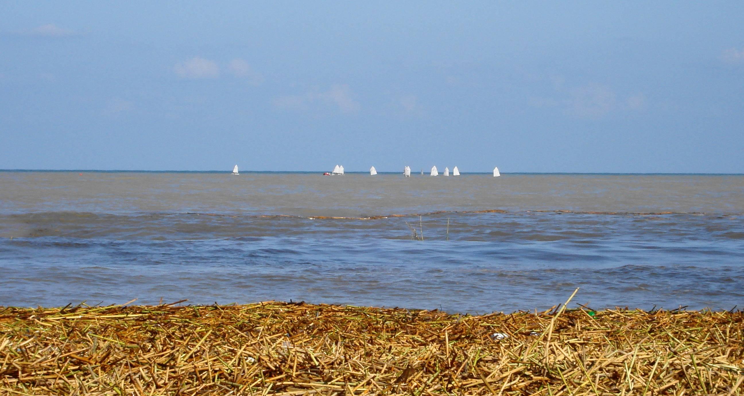 Foto playa Rafalcaid. Cañas y Mar