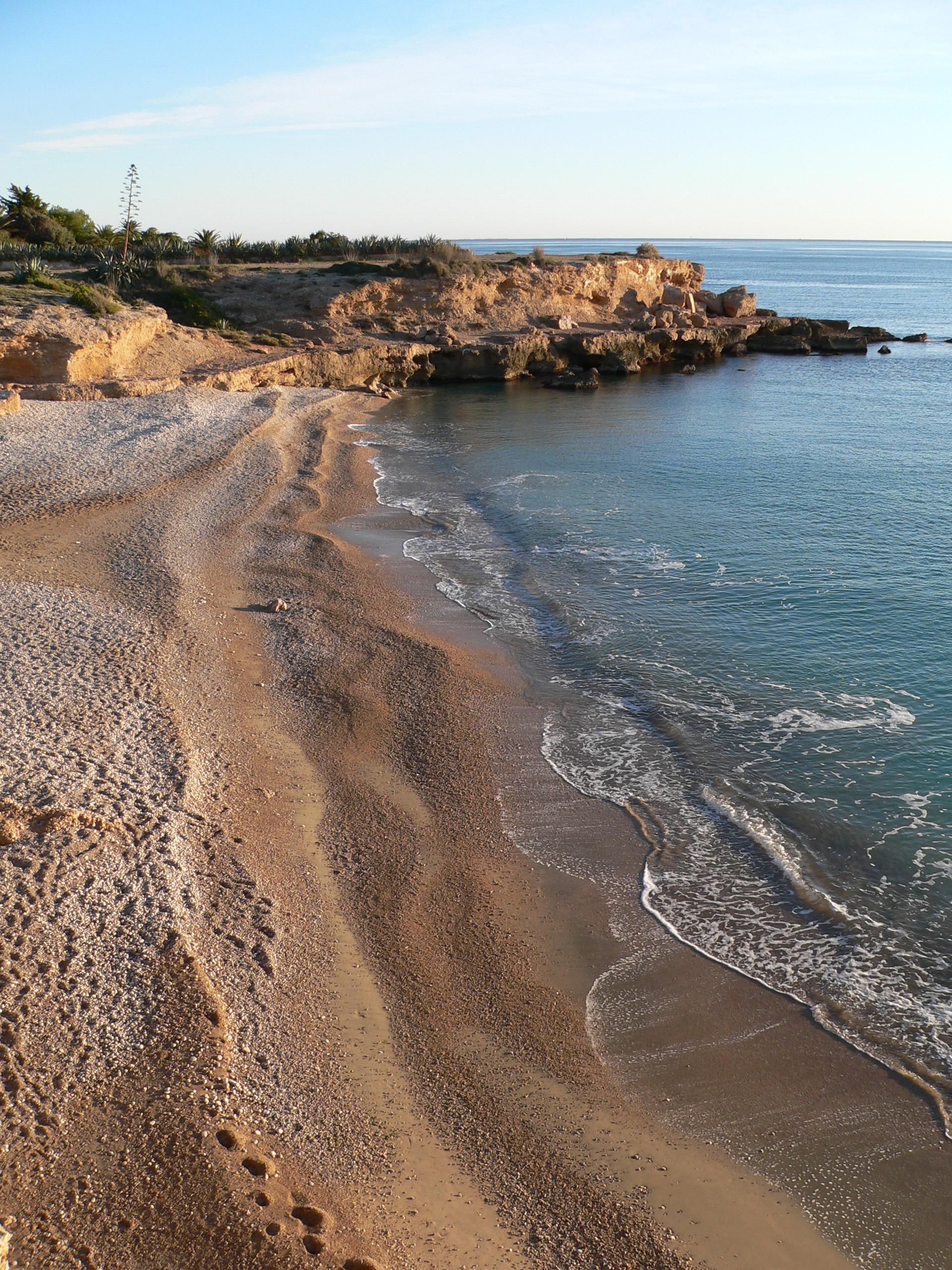 Foto playa Dels Cossis. Cala del pinar