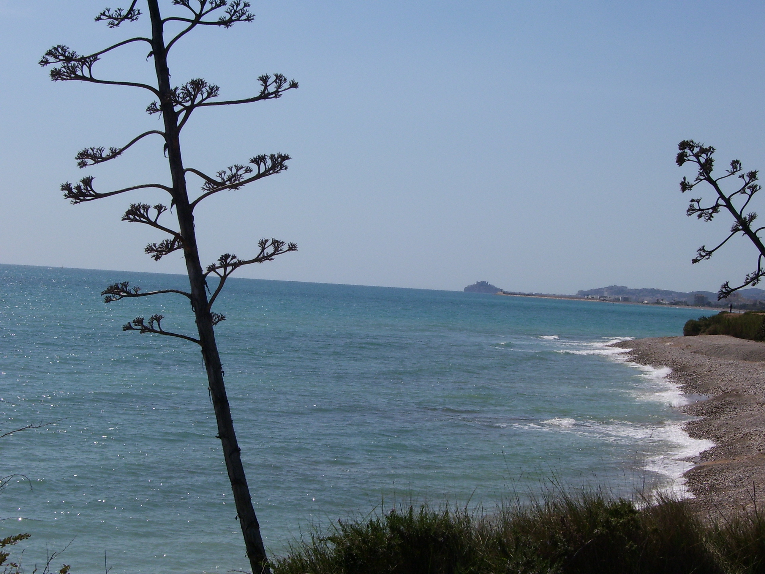 Playa Cala Puntal
