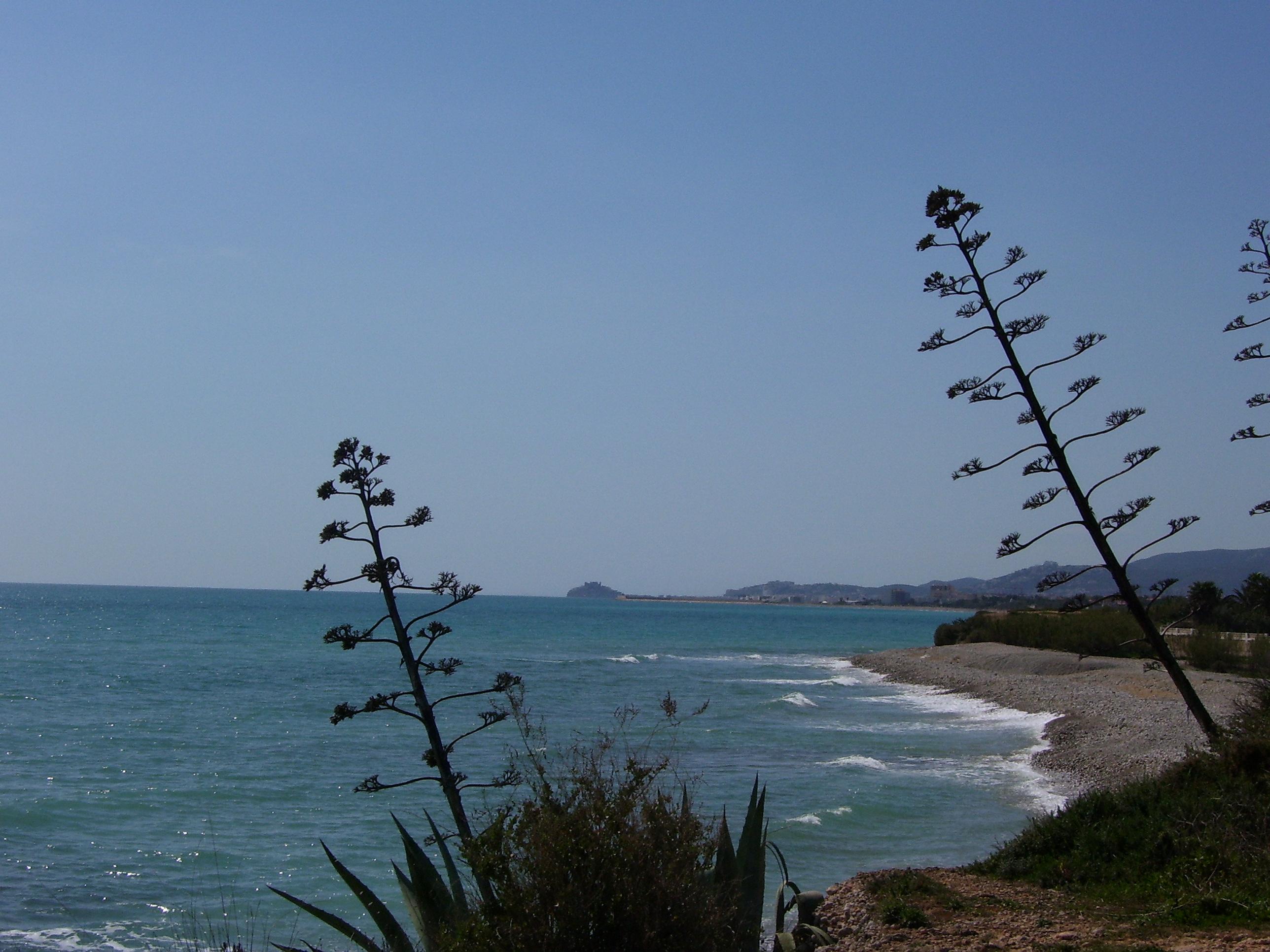 Foto playa Cala Puntal. Panorámica del castillo de Peñiscola