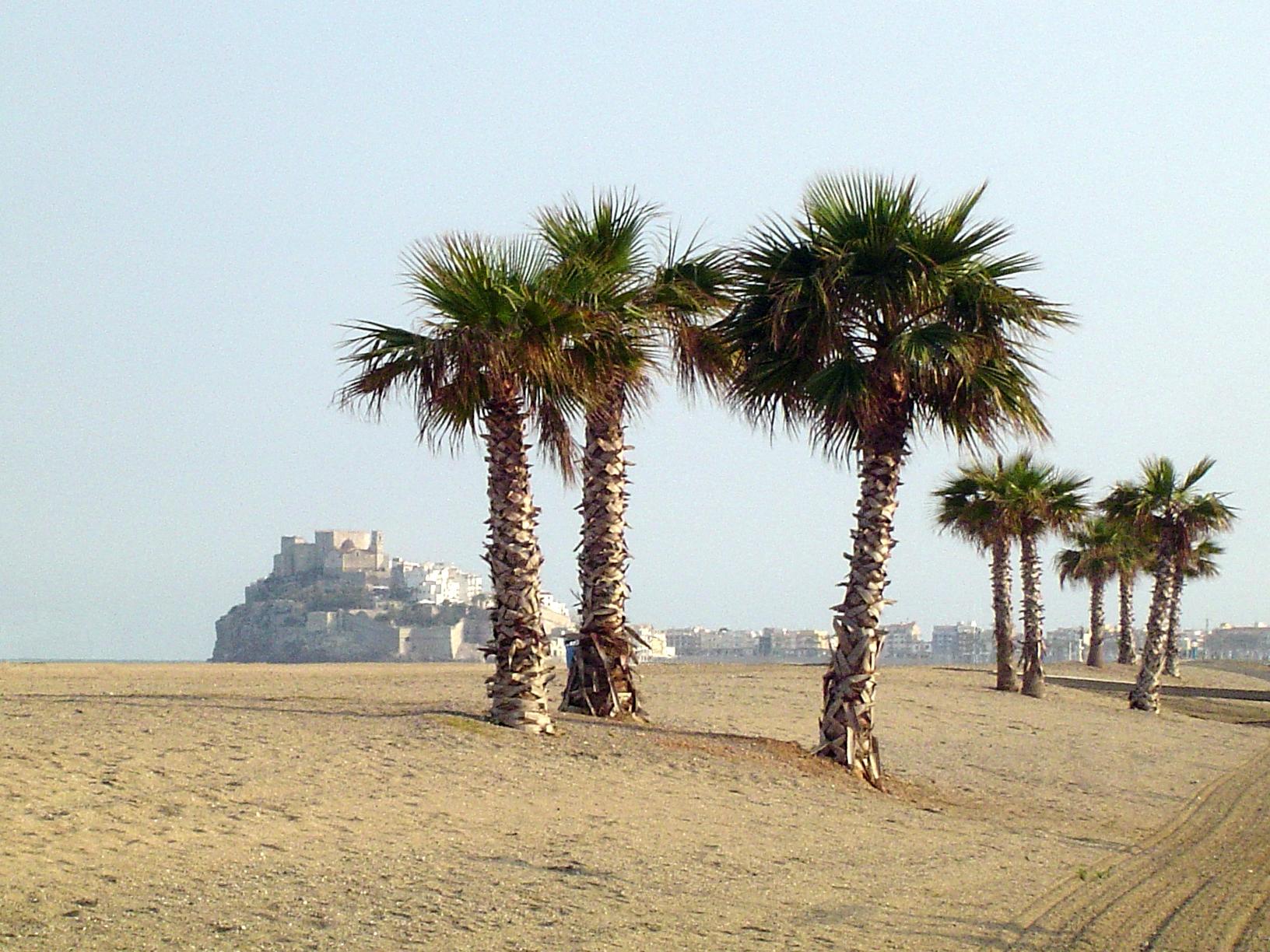 Foto playa Gururú. Playa