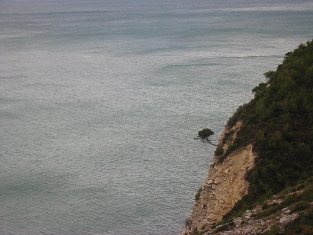 Foto playa Santa Lucía. Camino a Alcocebre