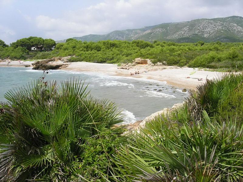 Playa Cala L´Aljub
