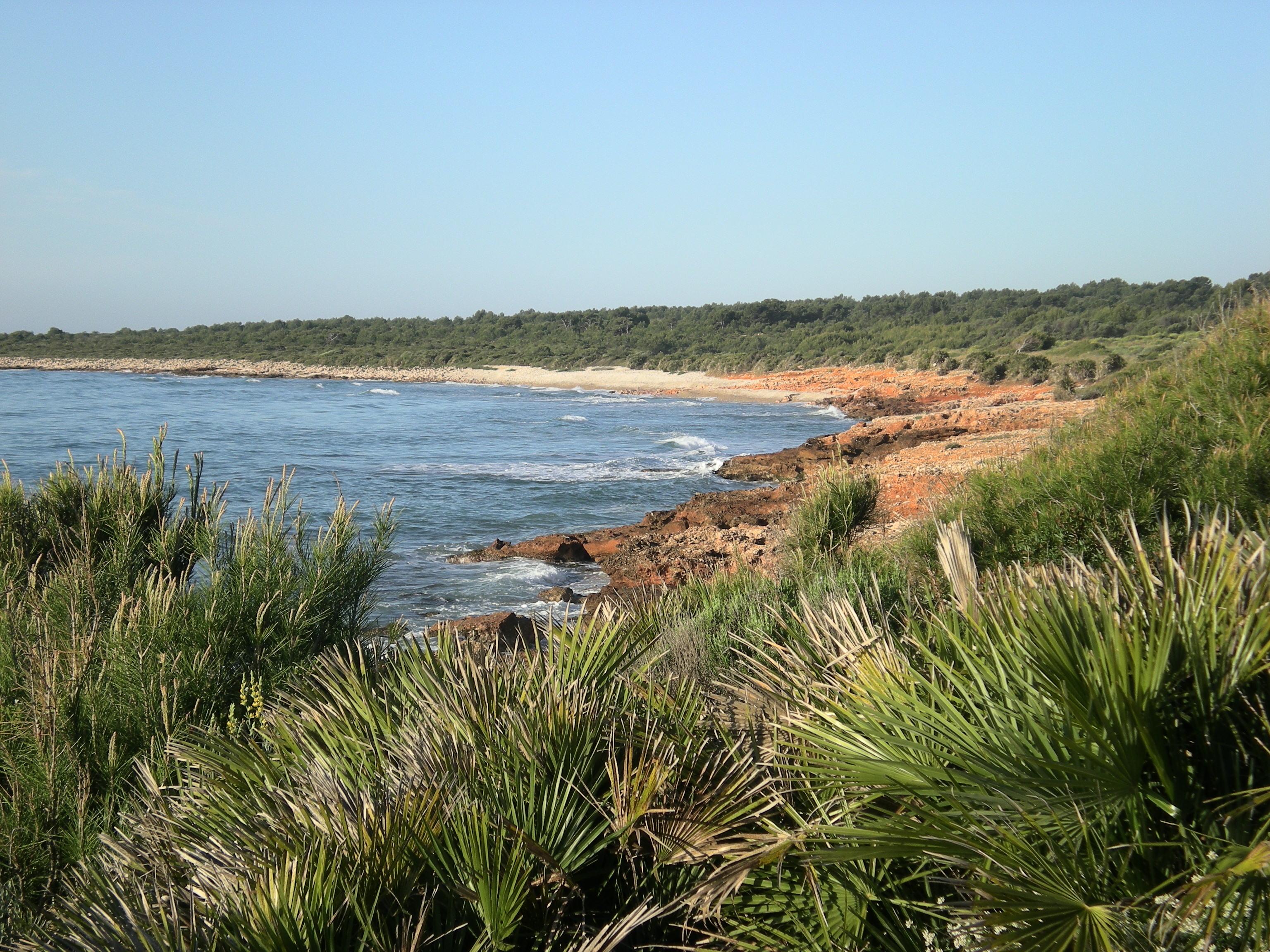 Foto playa Del Russo. Playa - Sierra de Irta