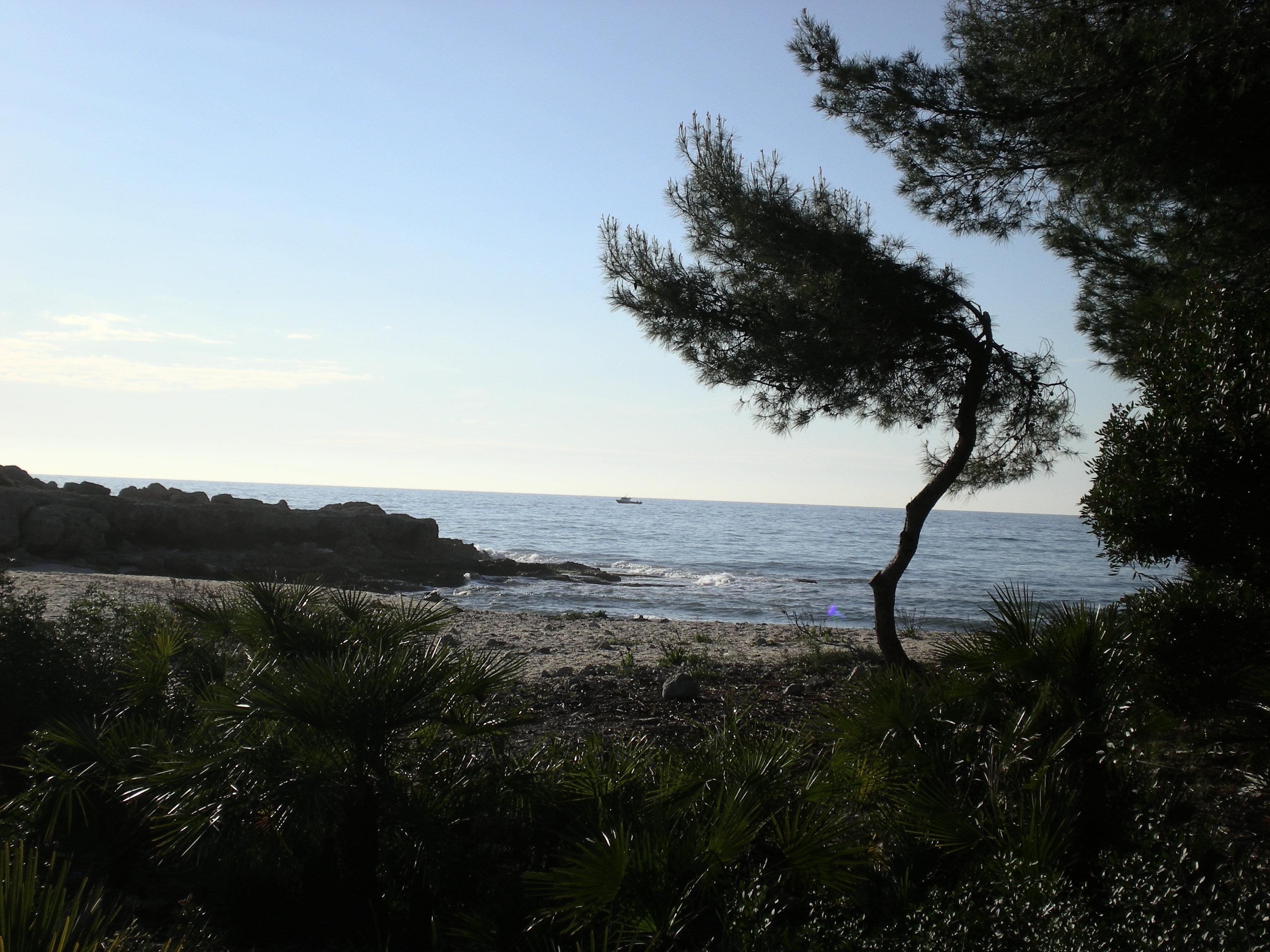 Foto playa Del Russo. Cala Sierra de Irta