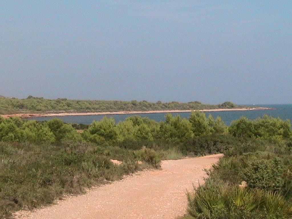 Playa Del Pebret
