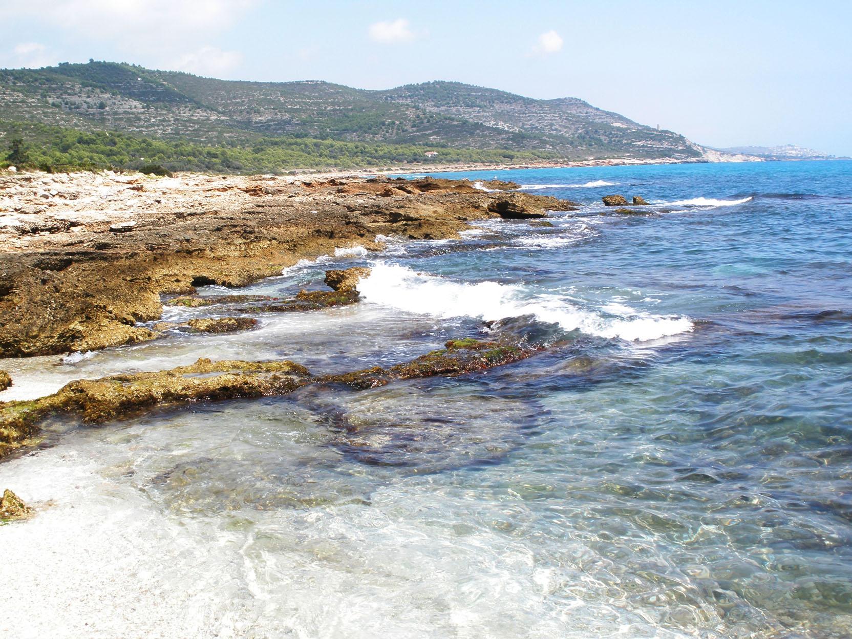 Playa Cala de las Petxinas