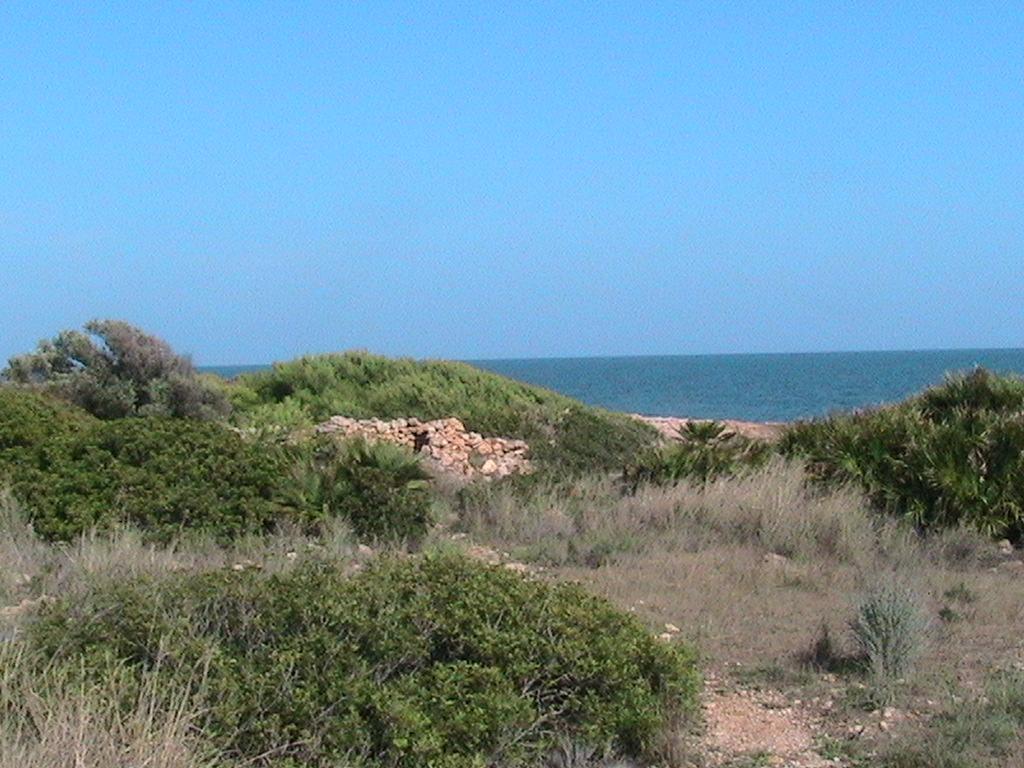 Foto playa Portonegro. IRTA