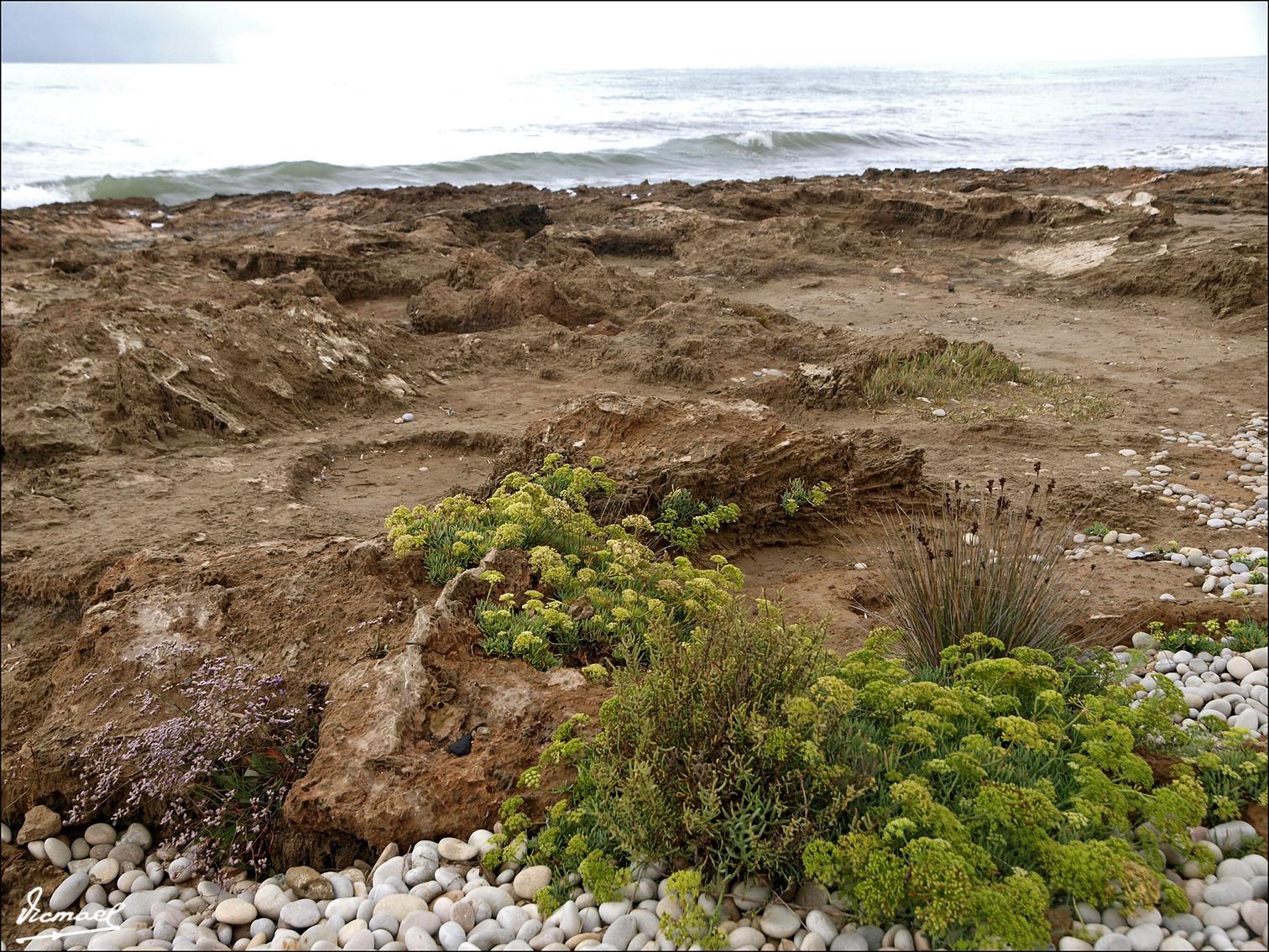 Foto playa Cuartel Vell / Quartell Vell. 090906-07 PARQUE PRAT DE CABANES