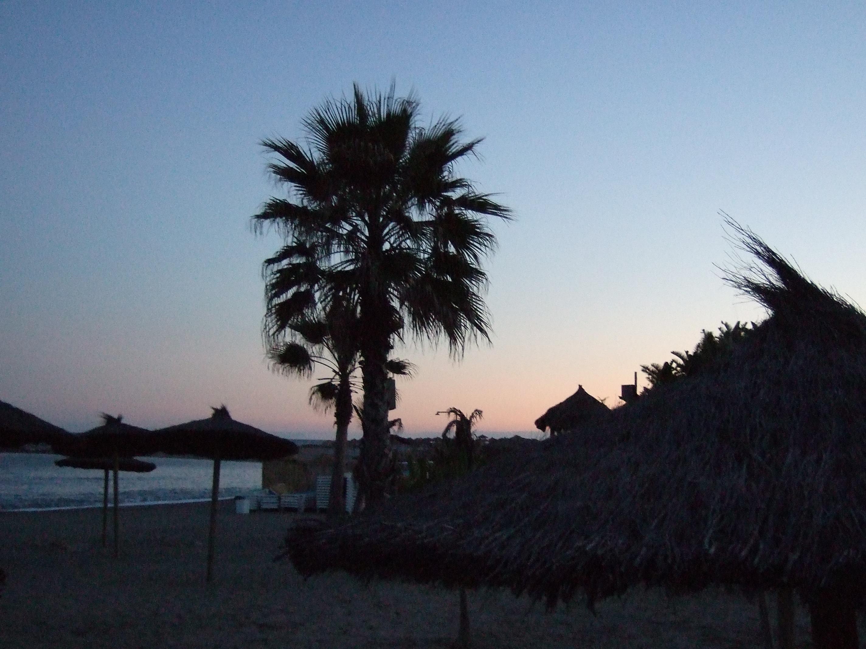 Foto playa Nueva Andalucía / Playa del Duque. Puerto Banús